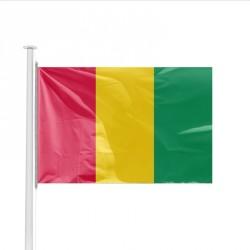 Pavillon pays GUINEE