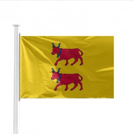 Drapeau Province BEARN