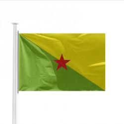 Drapeau Province GUYANE