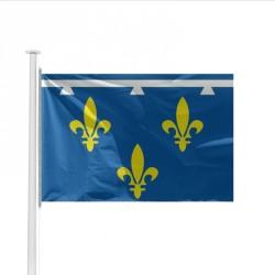 Drapeau Province ORLEANAIS