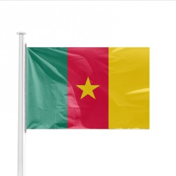 Drapeau pays CAMEROUN